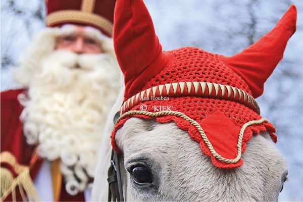 sint-in-borger-2016-11